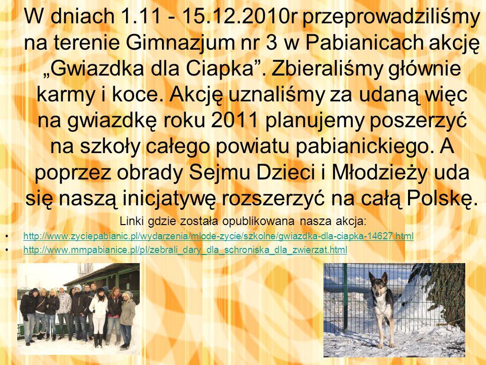 """W dniach 1.11 - 15.12.2010r przeprowadziliśmy na terenie Gimnazjum nr 3 w Pabianicach akcję """"Gwiazdka dla Ciapka ."""