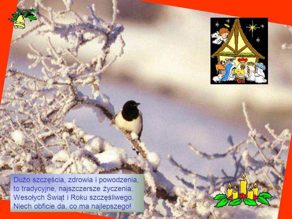 Dużo szczęścia, zdrowia i powodzenia, to tradycyjne, najszczersze życzenia. Wesołych Świąt i Roku szczęśliwego. Niech obficie da, co ma najlepszego!