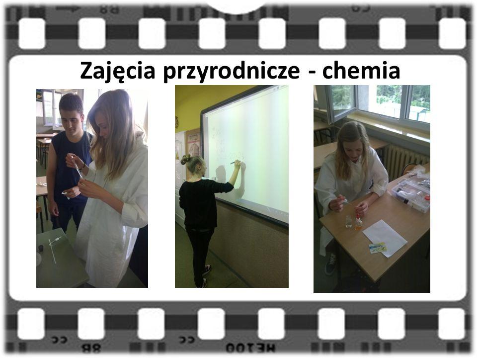 Zajęcia przyrodnicze - chemia