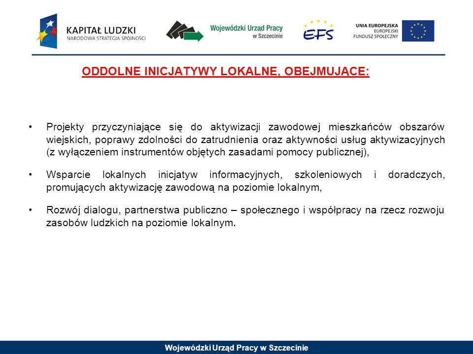 Wojewódzki Urząd Pracy w Szczecinie ODDOLNE INICJATYWY LOKALNE, OBEJMUJĄCE: Projekty przyczyniające się do aktywizacji zawodowej mieszkańców obszarów wiejskich, poprawy zdolności do zatrudnienia oraz aktywności usług aktywizacyjnych (z wyłączeniem instrumentów objętych zasadami pomocy publicznej), Wsparcie lokalnych inicjatyw informacyjnych, szkoleniowych i doradczych, promujących aktywizację zawodową na poziomie lokalnym, Rozwój dialogu, partnerstwa publiczno – społecznego i współpracy na rzecz rozwoju zasobów ludzkich na poziomie lokalnym.