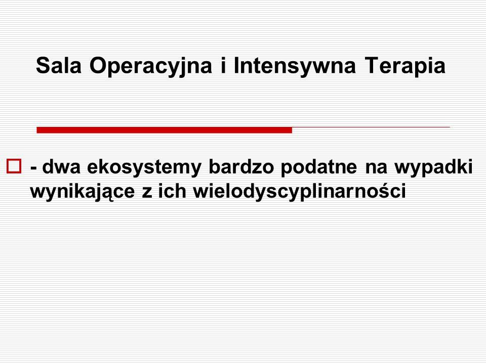 Sala Operacyjna i Intensywna Terapia  - dwa ekosystemy bardzo podatne na wypadki wynikające z ich wielodyscyplinarności
