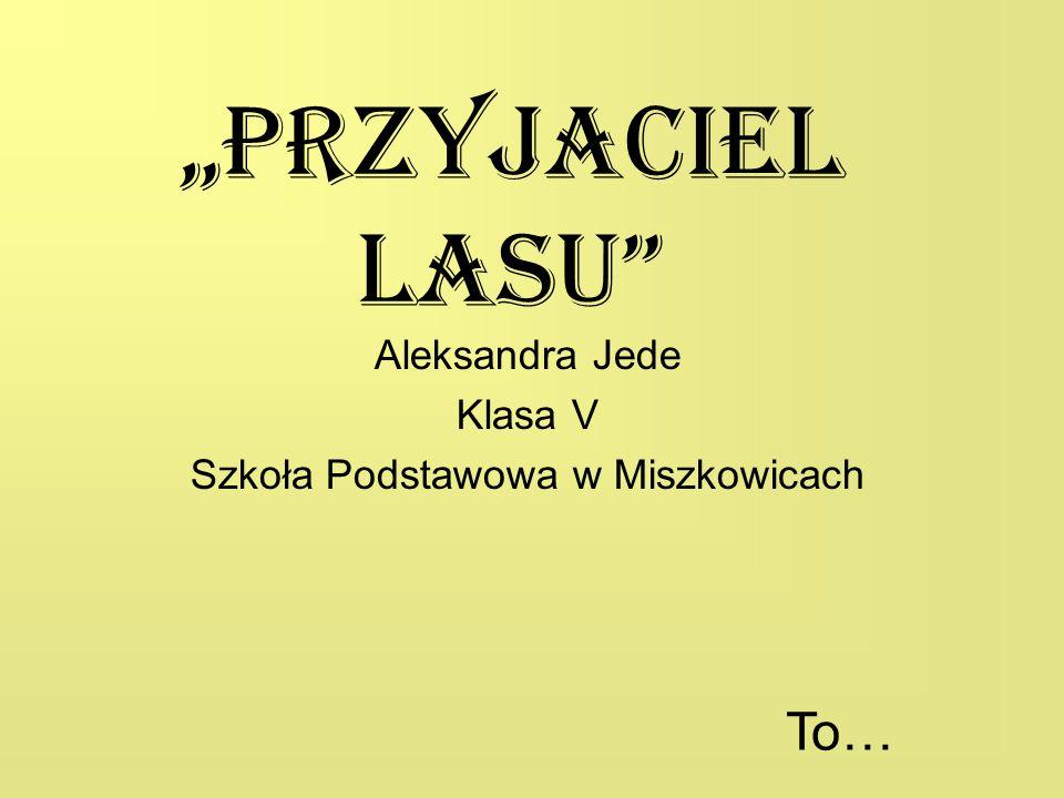 """""""Przyjaciel lasu Aleksandra Jede Klasa V Szkoła Podstawowa w Miszkowicach To…"""