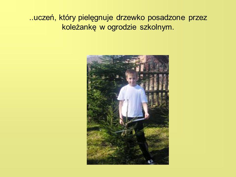 ..uczeń, który pielęgnuje drzewko posadzone przez koleżankę w ogrodzie szkolnym.