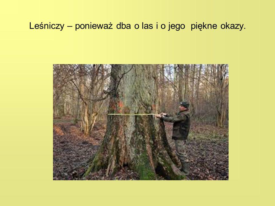 Leśniczy – ponieważ dba o las i o jego piękne okazy.
