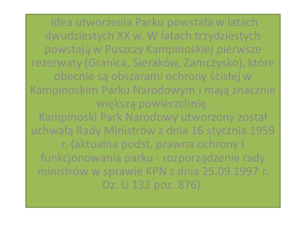 Największy wpływ na rzeźbę terenu Puszczy Kampinoskiej miał ostatni lądolód.