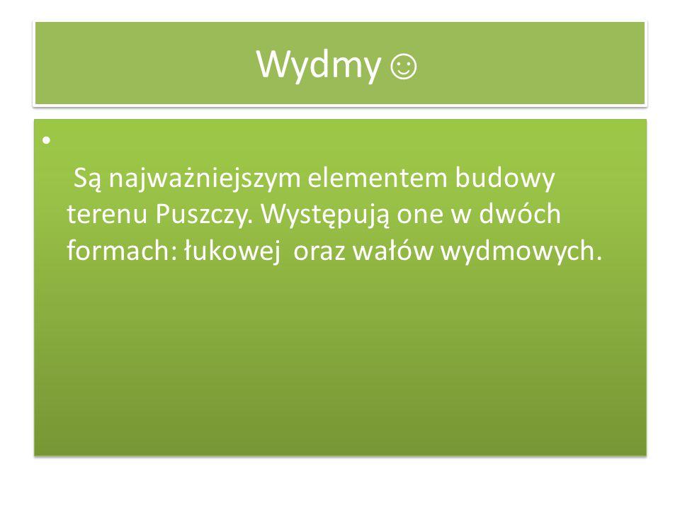 Wydmy ☺ Są najważniejszym elementem budowy terenu Puszczy. Występują one w dwóch formach: łukowej oraz wałów wydmowych.