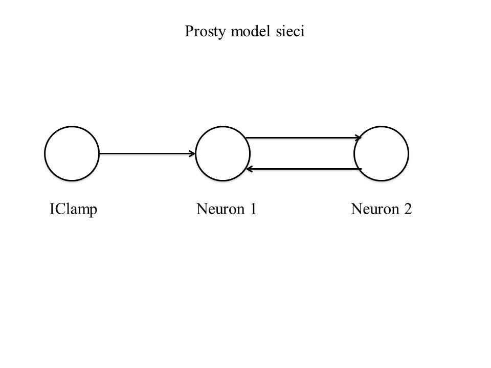 Prosty model sieci IClampNeuron 1Neuron 2