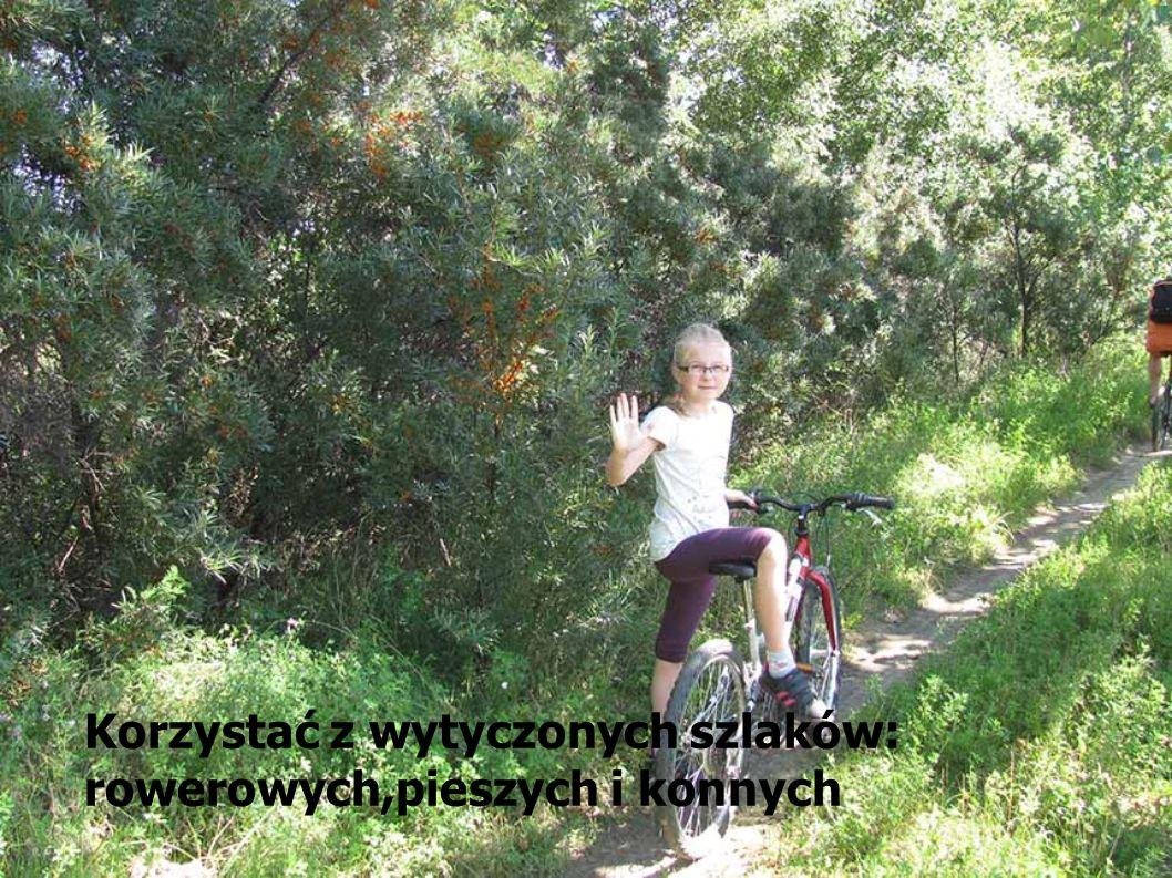 W lesie można aktywnie wypoczywać: -spacerować i biegać -zbierać grzyby i owoce