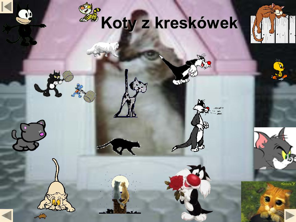 Koty z kreskówek