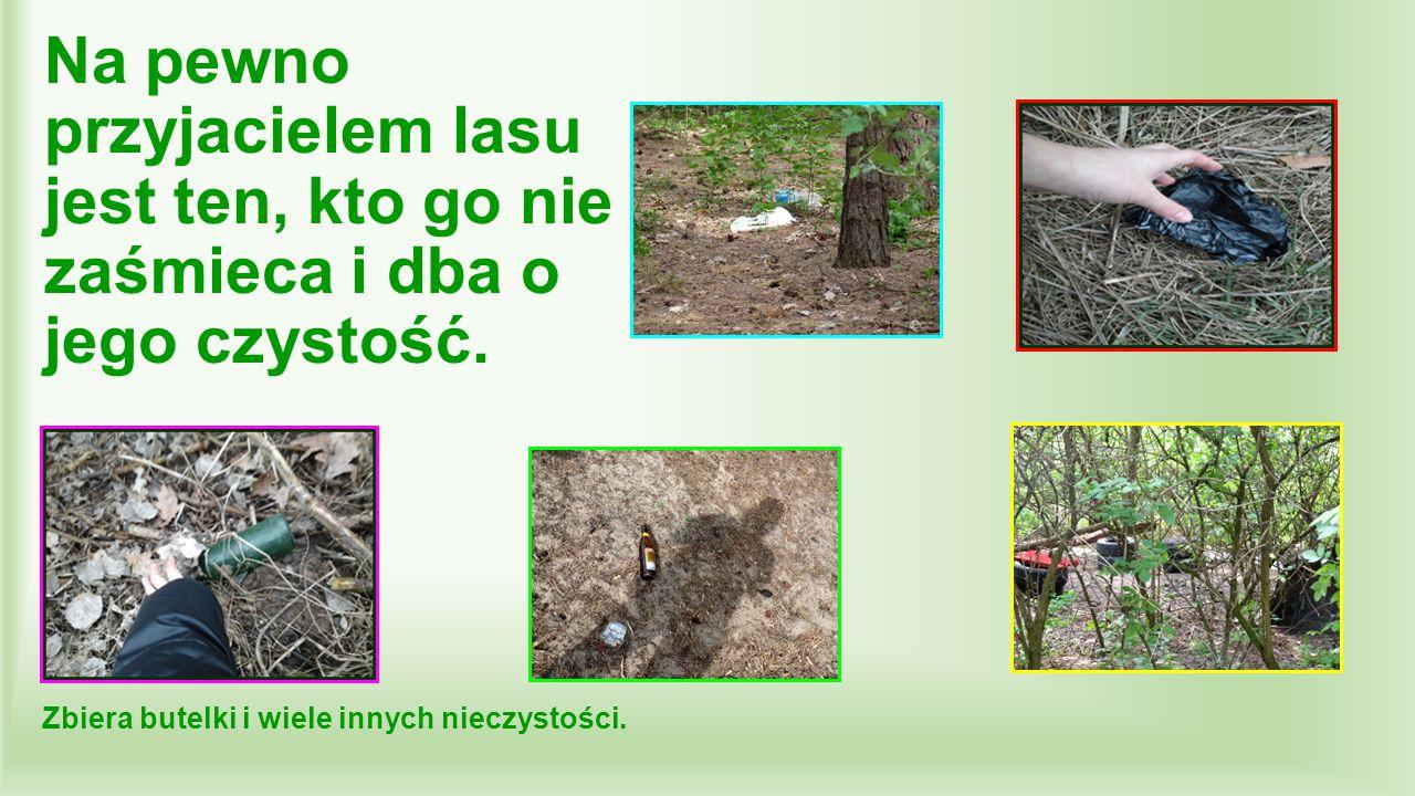 Na pewno przyjacielem lasu jest ten, kto go nie zaśmieca i dba o jego czystość. Zbiera butelki i wiele innych nieczystości.