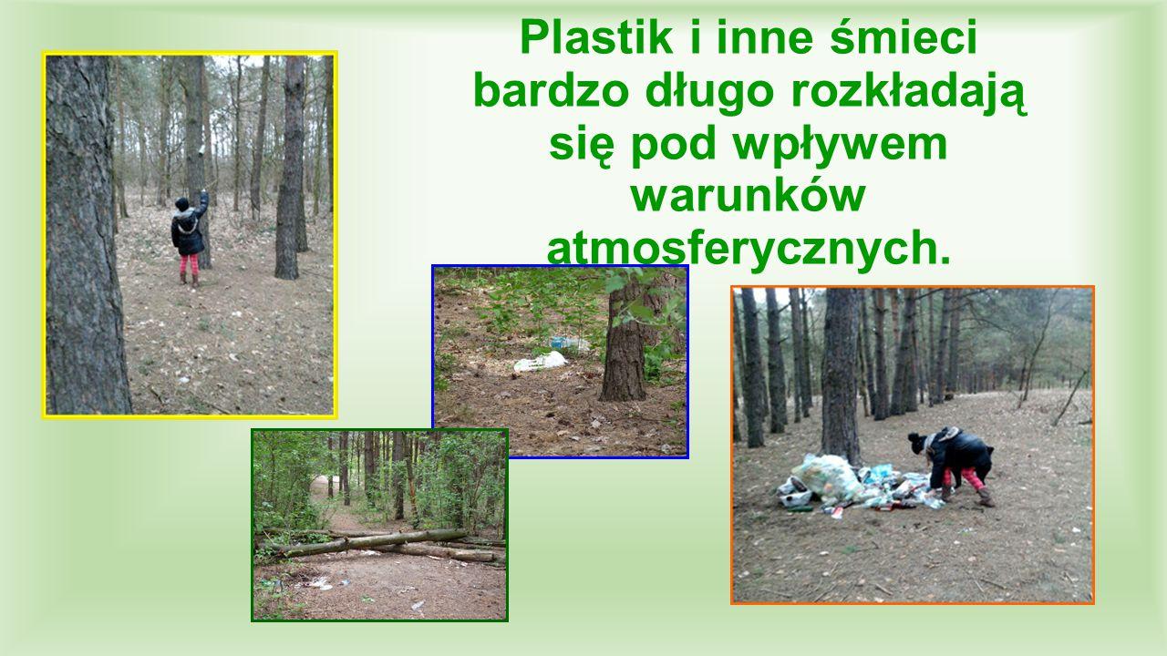 Plastik i inne śmieci bardzo długo rozkładają się pod wpływem warunków atmosferycznych.