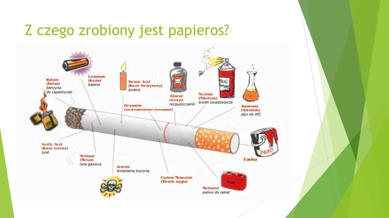 Z czego są papierosy? Tytoń jest głównym składnikiem papierosa. Tytoń jest owinięty w papier który ma na końcu żółty pasek. Dla palaczy oznacza on mie