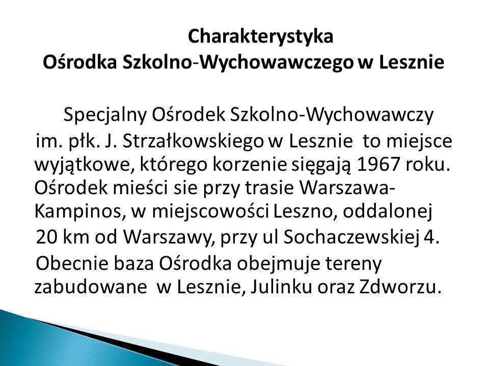 Charakterystyka Ośrodka Szkolno-Wychowawczego w Lesznie Specjalny Ośrodek Szkolno-Wychowawczy im. płk. J. Strzałkowskiego w Lesznie to miejsce wyjątko