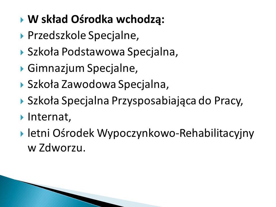 Aby osiągnąć powyższe cele, Specjalny Ośrodek Szkolno - Wychowawczy w Lesznie powinien zapewniać: