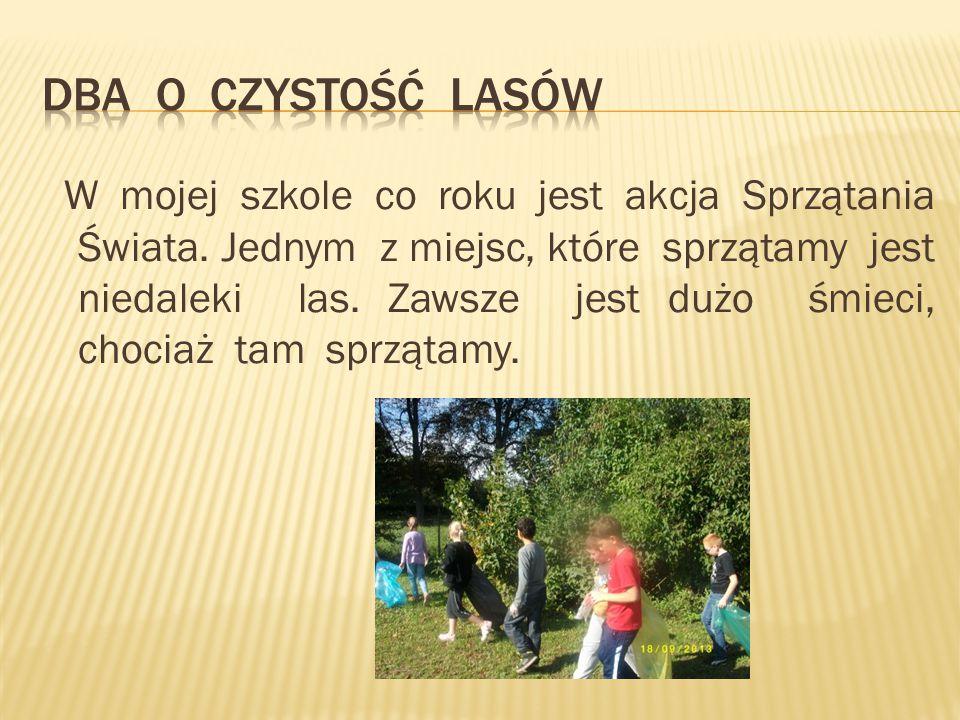 W mojej szkole co roku jest akcja Sprzątania Świata.
