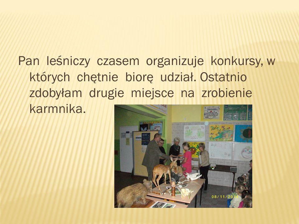 W szkole są zbierane kasztany dla zwierząt, które będą pokarmem dla nich zimą.