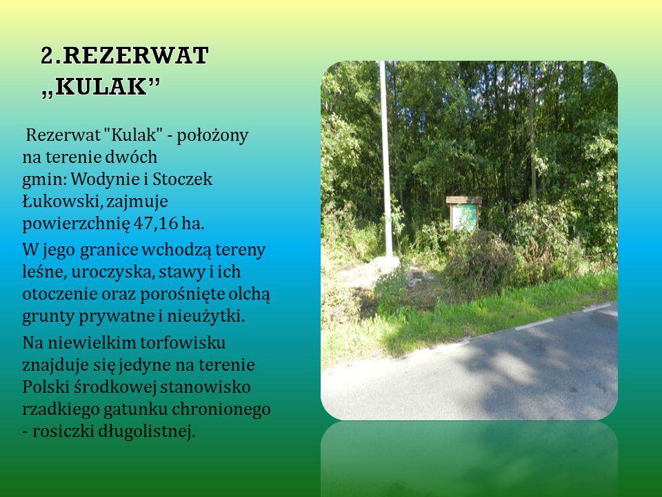 Rezerwat Kulak - położony na terenie dwóch gmin: Wodynie i Stoczek Łukowski, zajmuje powierzchnię 47,16 ha.