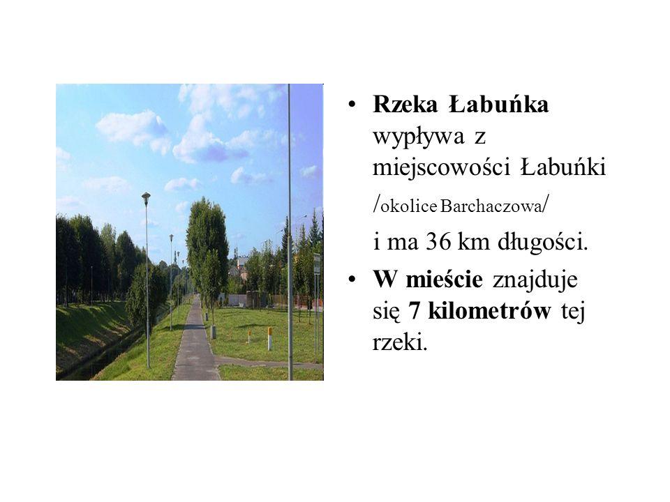 Rzeka Łabuńka wypływa z miejscowości Łabuńki / okolice Barchaczowa / i ma 36 km długości. W mieście znajduje się 7 kilometrów tej rzeki.