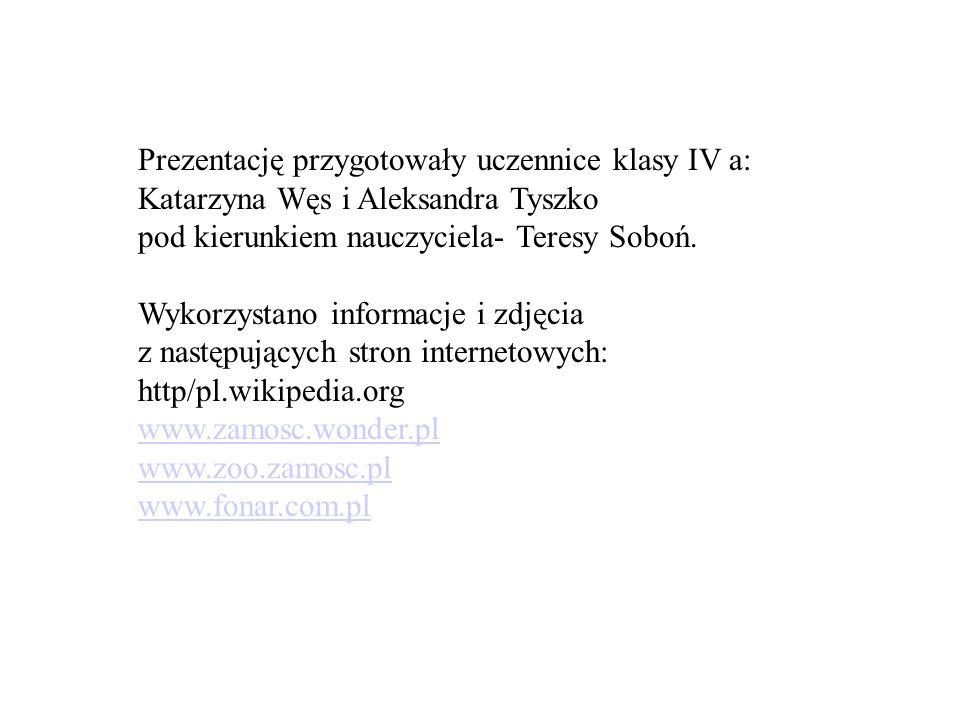 Prezentację przygotowały uczennice klasy IV a: Katarzyna Węs i Aleksandra Tyszko pod kierunkiem nauczyciela- Teresy Soboń. Wykorzystano informacje i z