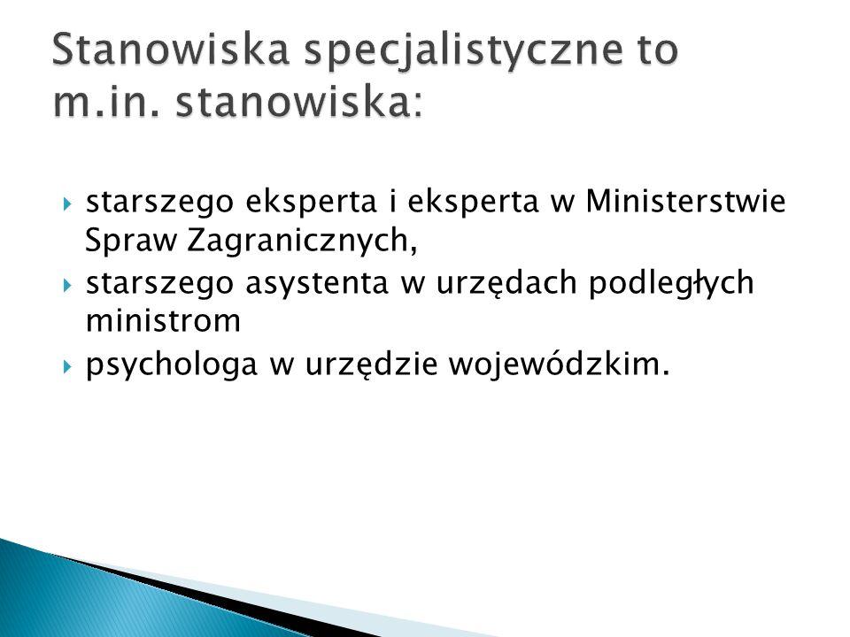  starszego eksperta i eksperta w Ministerstwie Spraw Zagranicznych,  starszego asystenta w urzędach podległych ministrom  psychologa w urzędzie woj