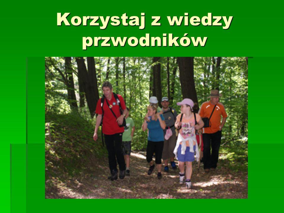 W lesie jesteś gościem