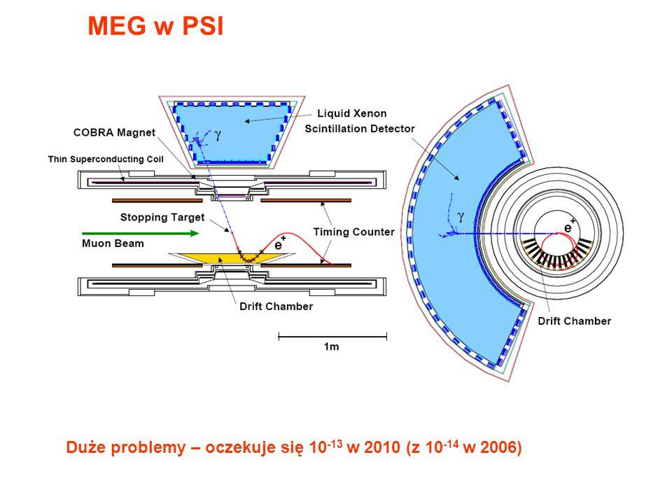 MEG w PSI Duże problemy – oczekuje się 10 -13 w 2010 (z 10 -14 w 2006)