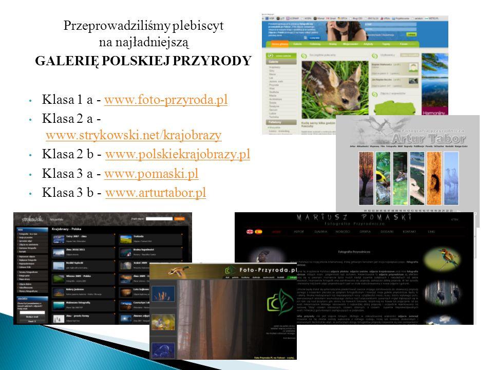 Przeprowadziliśmy plebiscyt na najładniejszą GALERIĘ POLSKIEJ PRZYRODY Klasa 1 a - www.foto-przyroda.plwww.foto-przyroda.pl Klasa 2 a - www.strykowski.net/krajobrazywww.strykowski.net/krajobrazy Klasa 2 b - www.polskiekrajobrazy.plwww.polskiekrajobrazy.pl Klasa 3 a - www.pomaski.plwww.pomaski.pl Klasa 3 b - www.arturtabor.plwww.arturtabor.pl