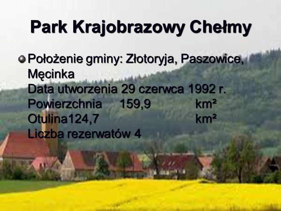 Park Krajobrazowy Chełmy Położenie gminy: Złotoryja, Paszowice, Męcinka Data utworzenia 29 czerwca 1992 r. Powierzchnia 159,9 km² Otulina124,7 km² Lic