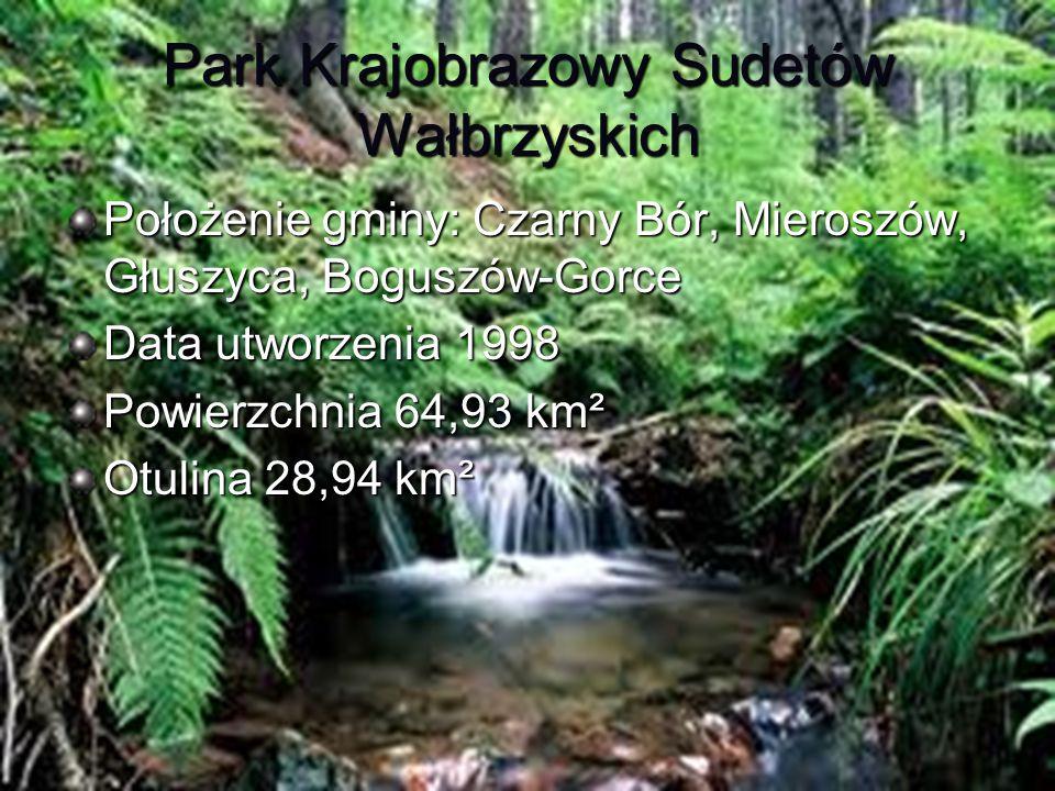 Park Krajobrazowy Sudetów Wałbrzyskich Położenie gminy: Czarny Bór, Mieroszów, Głuszyca, Boguszów-Gorce Data utworzenia 1998 Powierzchnia 64,93 km² Ot