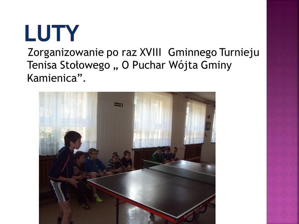 """Zorganizowanie po raz XVIII Gminnego Turnieju Tenisa Stołowego """" O Puchar Wójta Gminy Kamienica""""."""