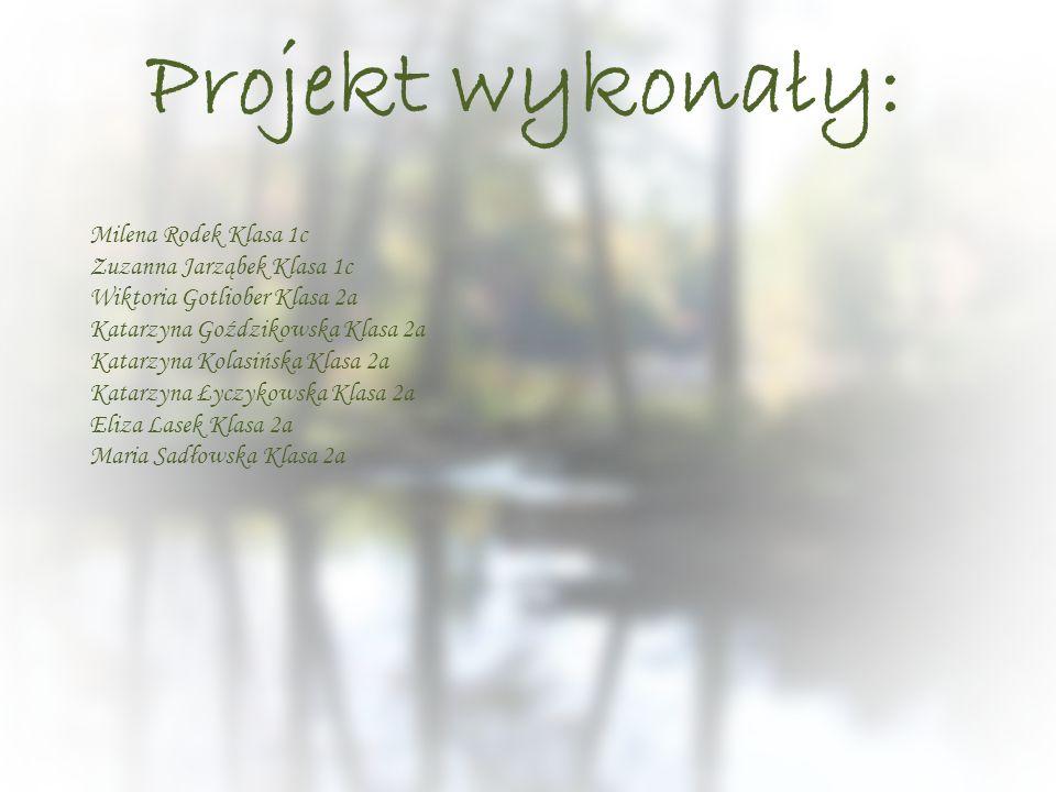 Projekt wykonały: Milena Rodek Klasa 1c Zuzanna Jarząbek Klasa 1c Wiktoria Gotliober Klasa 2a Katarzyna Goździkowska Klasa 2a Katarzyna Kolasińska Kla