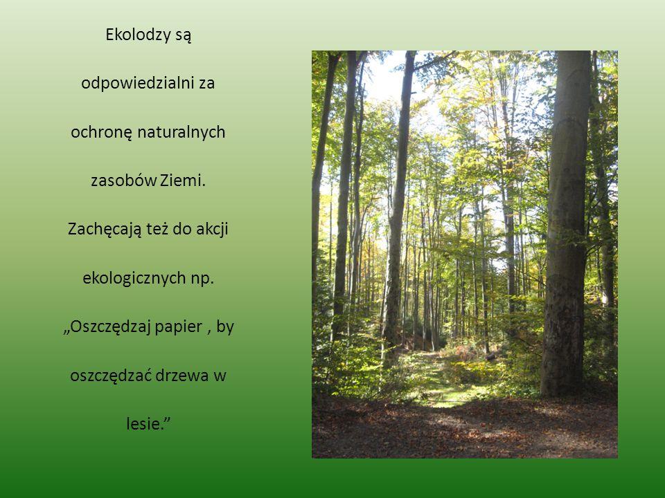 Ekolodzy są odpowiedzialni za ochronę naturalnych zasobów Ziemi.
