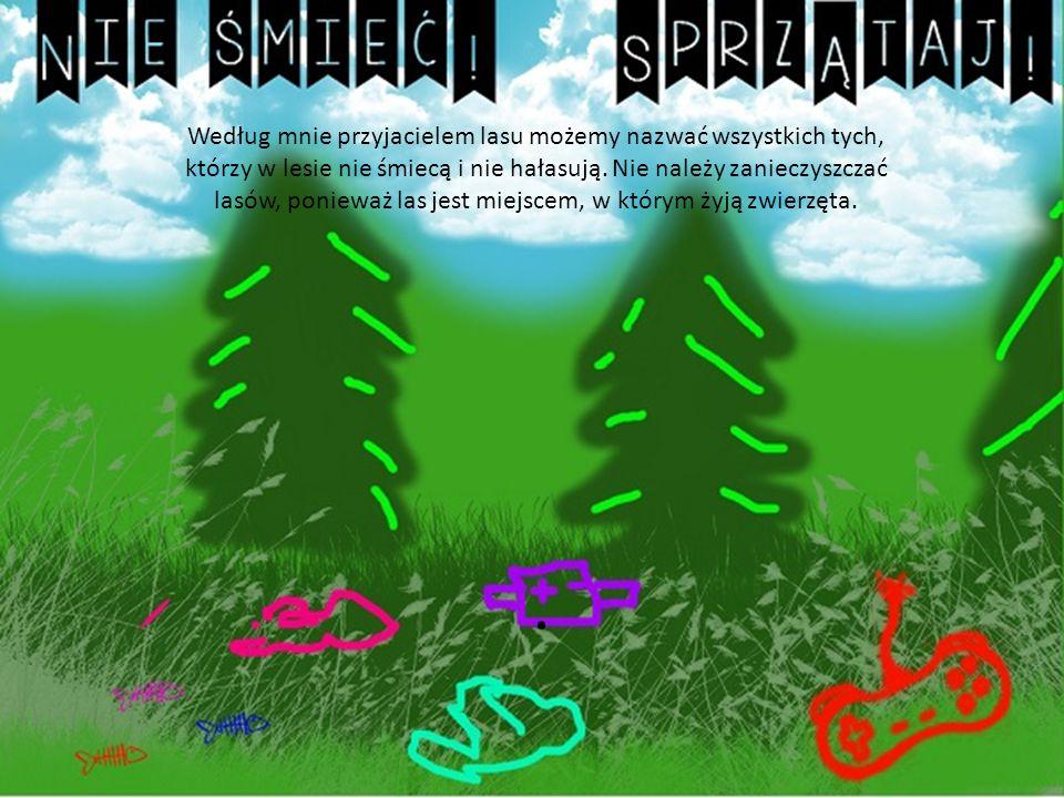 Według mnie przyjacielem lasu możemy nazwać wszystkich tych, którzy w lesie nie śmiecą i nie hałasują.