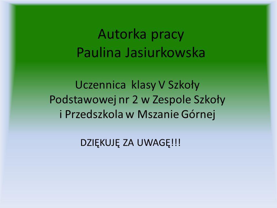 Autorka pracy Paulina Jasiurkowska Uczennica klasy V Szkoły Podstawowej nr 2 w Zespole Szkoły i Przedszkola w Mszanie Górnej DZIĘKUJĘ ZA UWAGĘ!!!