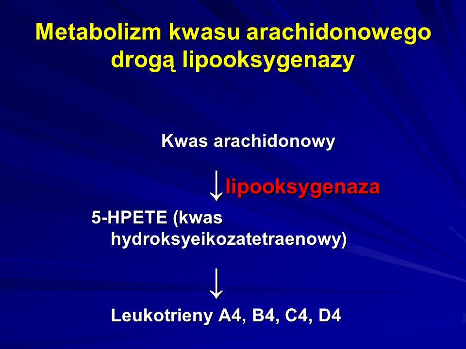 Metabolizm kwasu arachidonowego drogą lipooksygenazy Kwas arachidonowy ↓ lipooksygenaza 5-HPETE (kwas hydroksyeikozatetraenowy) ↓ Leukotrieny A4, B4,