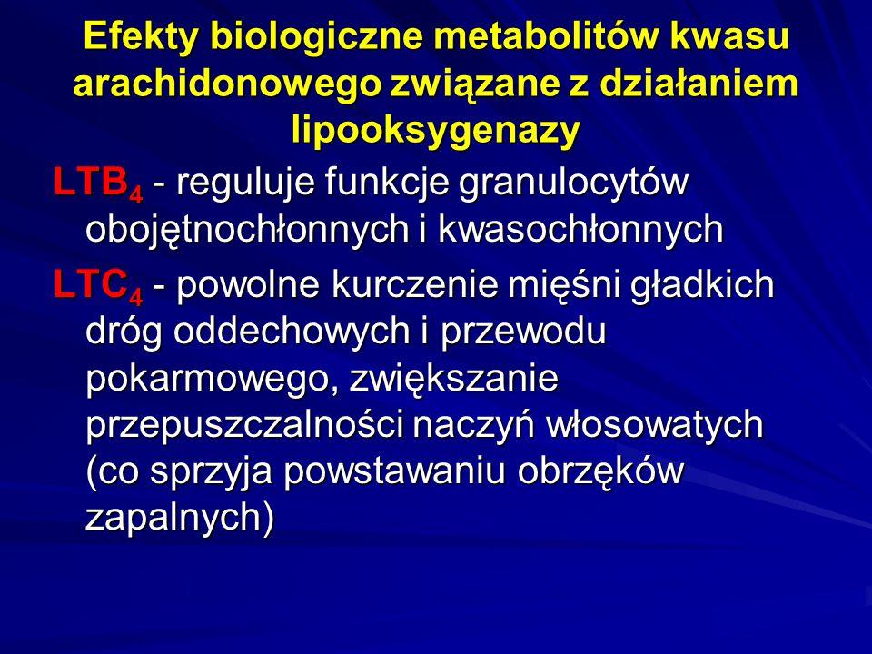 Efekty biologiczne metabolitów kwasu arachidonowego związane z działaniem lipooksygenazy LTB 4 - reguluje funkcje granulocytów obojętnochłonnych i kwa