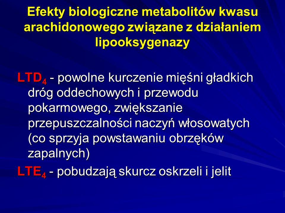 Efekty biologiczne metabolitów kwasu arachidonowego związane z działaniem lipooksygenazy LTD 4 - powolne kurczenie mięśni gładkich dróg oddechowych i