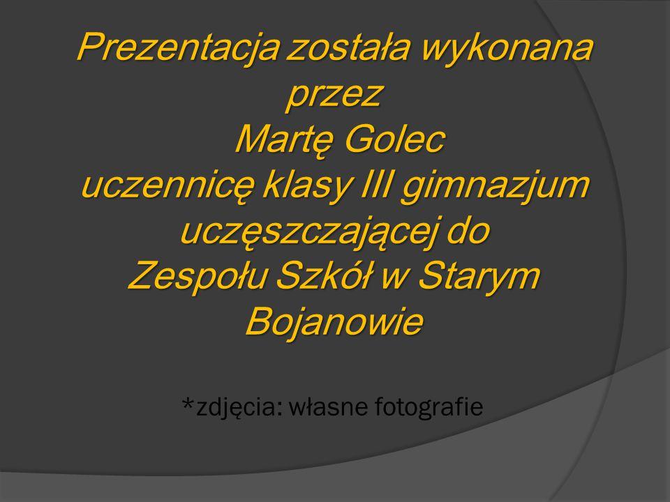 Prezentacja została wykonana przez Martę Golec uczennicę klasy III gimnazjum uczęszczającej do Zespołu Szkół w Starym Bojanowie Prezentacja została wy