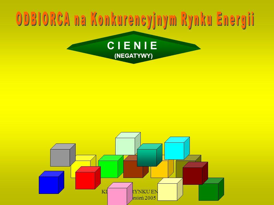 KLIENT NA RYNKU ENERGII 19 wrzesień 2005 C I E N I E (NEGATYWY)
