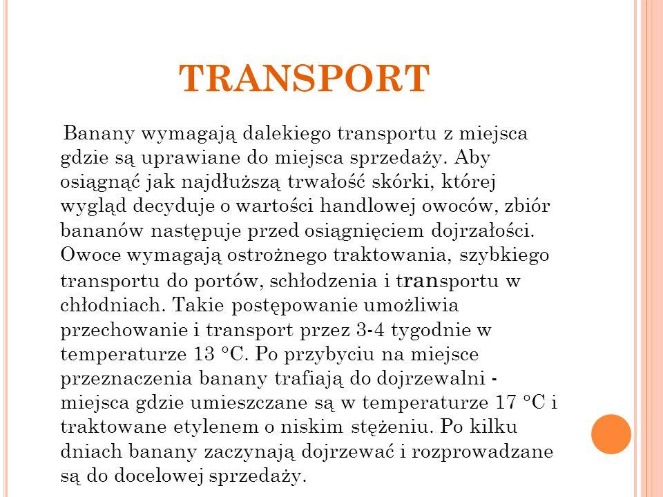 TRANSPORT Banany wymagają dalekiego transportu z miejsca gdzie są uprawiane do miejsca sprzedaży. Aby osiągnąć jak najdłuższą trwałość skórki, której