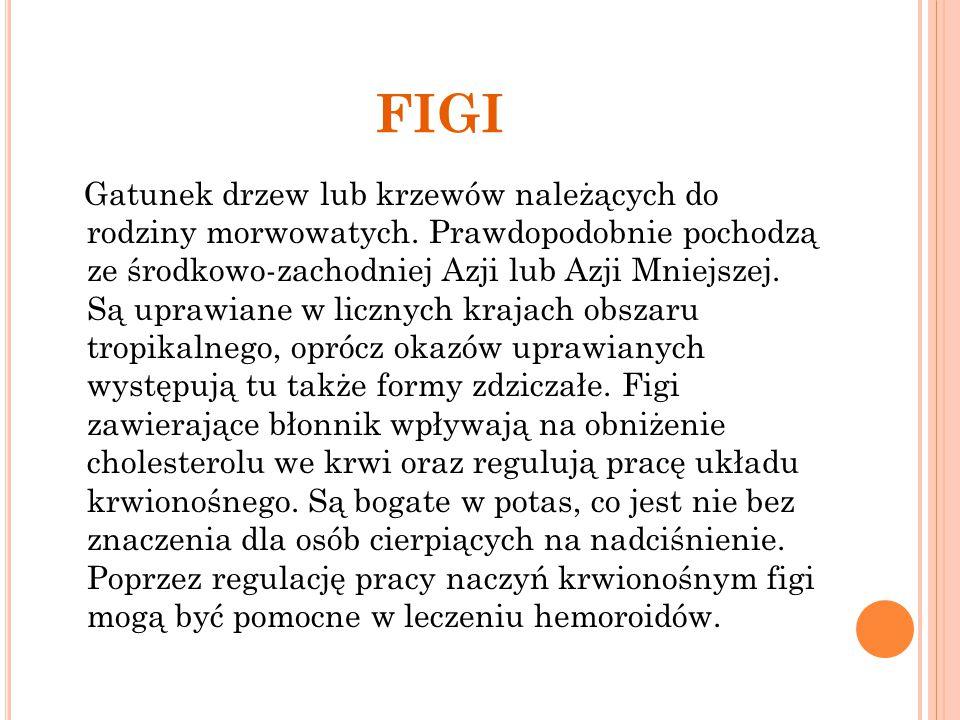 FIGI Gatunek drzew lub krzewów należących do rodziny morwowatych. Prawdopodobnie pochodzą ze środkowo-zachodniej Azji lub Azji Mniejszej. Są uprawiane