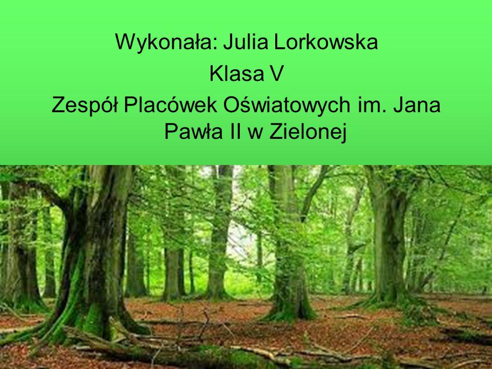 Wykonała: Julia Lorkowska Klasa V Zespół Placówek Oświatowych im. Jana Pawła II w Zielonej