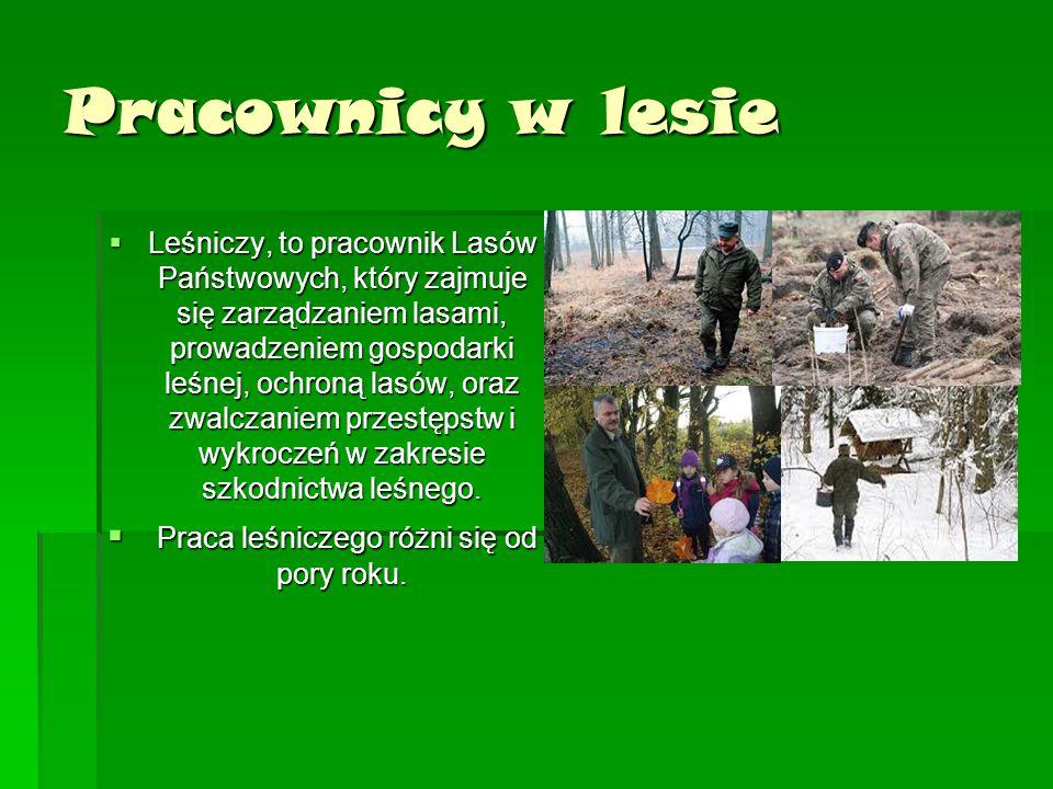 Pracownicy w lesie  Leśniczy, to pracownik Lasów Państwowych, który zajmuje się zarządzaniem lasami, prowadzeniem gospodarki leśnej, ochroną lasów, o