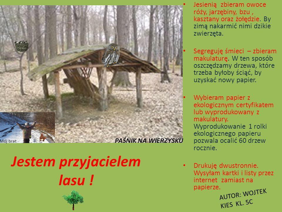 Co powinien wiedzieć przyjaciel lasu ? Las jest domem wielu gatunków zwierząt. Starajmy się nie hałasować na łonie przyrody, by ich nie straszyć. W na