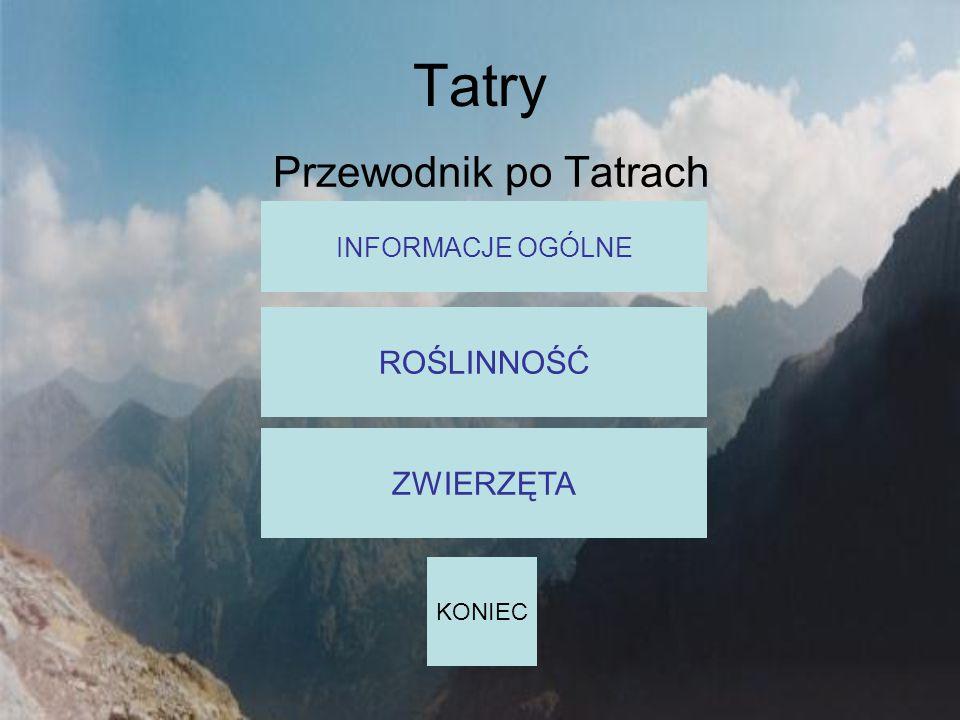 Tatry Przewodnik po Tatrach INFORMACJE OGÓLNE ROŚLINNOŚĆ ZWIERZĘTA KONIEC