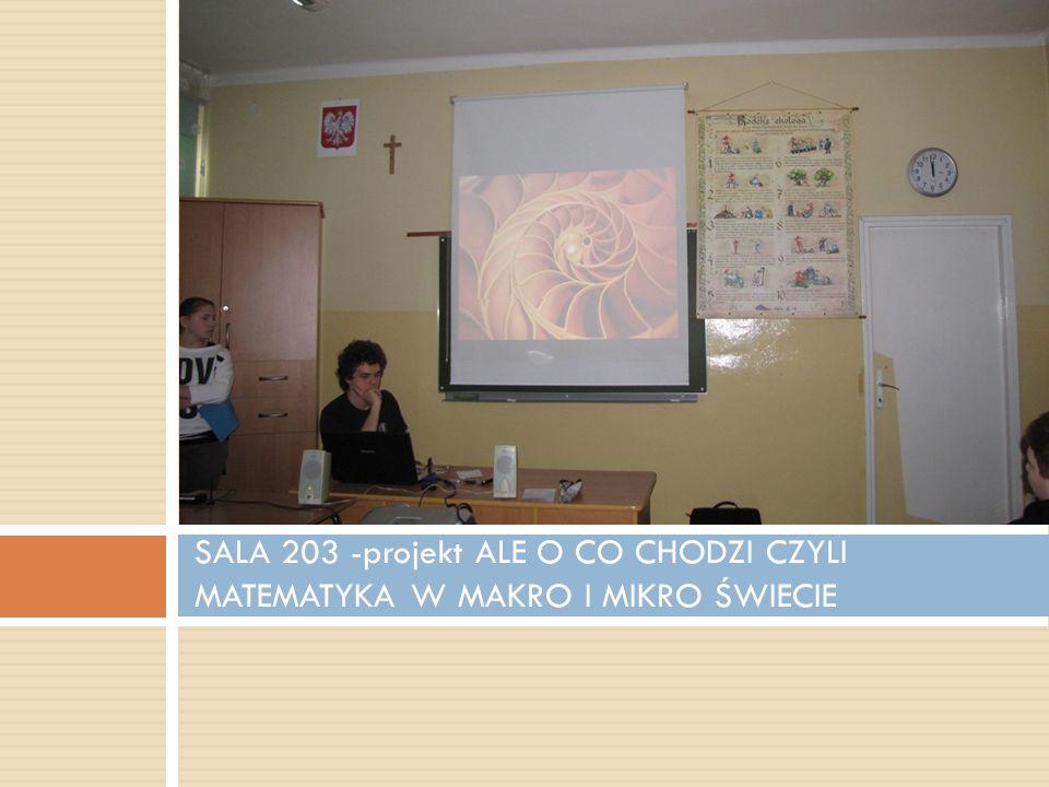 SALA 203 -projekt ALE O CO CHODZI CZYLI MATEMATYKA W MAKRO I MIKRO ŚWIECIE