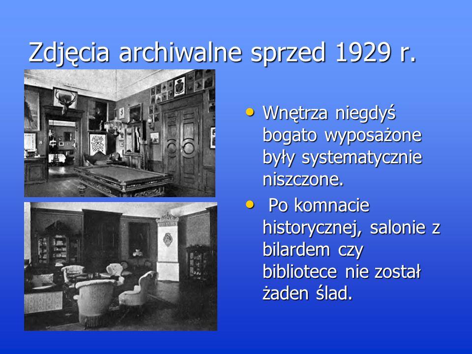 Czasy obecne Szansa dla rezydencji wybitnego rodu Niemojowskich pojawiła się dopiero kilka lat temu, kiedy całe założenie pałacowo-parkowe zostało kupione przez prywatnego inwestora.