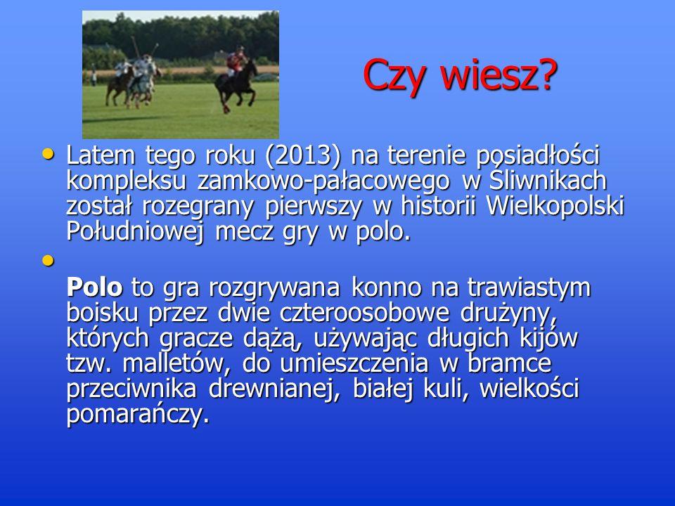 Źródła informacji Wikipedia.org/wiki/śliwniki Wikipedia.org/wiki/śliwniki www.galeria wielkopolska.