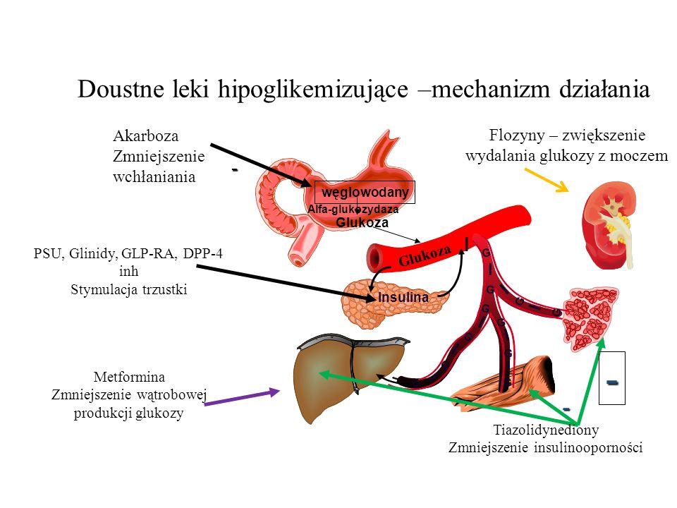 Doustne leki hipoglikemizujące –mechanizm działania PSU, Glinidy, GLP-RA, DPP-4 inh Stymulacja trzustki Metformina Zmniejszenie wątrobowej produkcji g
