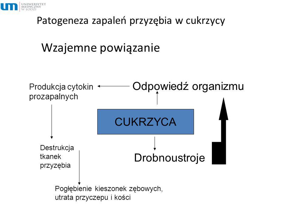 Patogeneza zapaleń przyzębia w cukrzycy Wzajemne powiązanie CUKRZYCA Drobnoustroje Odpowiedź organizmu Produkcja cytokin prozapalnych Destrukcja tkane